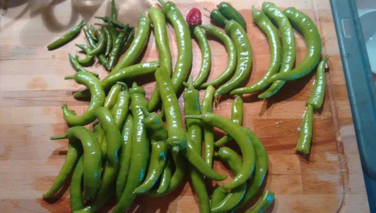 eingelegte-paprika-1